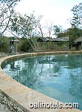 Waka Shorea - swimming pool